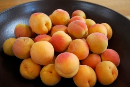 APUA authority offers to repair trade share for apricots