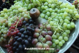 Armenia does not protection unfamiliar investors opposite phylloxera